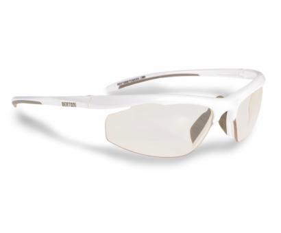 Bertoni Photochromic F308B sunglasses