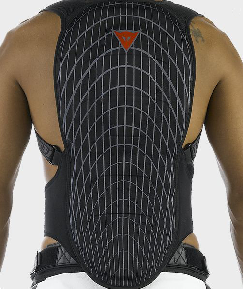 Dainese back protection N-Frame 2