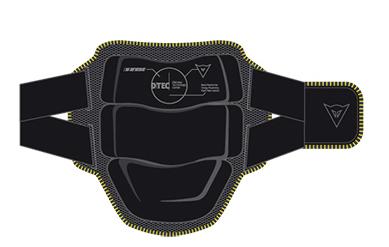 Protezione schiena Dainese New Bap 2000-3