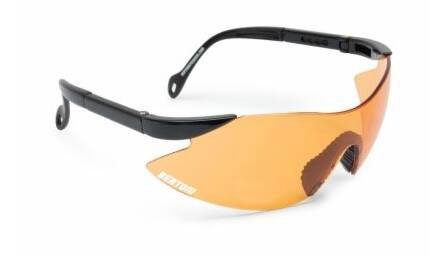 BERTONI AF185B Motorcycle Anti-Fog Glasses