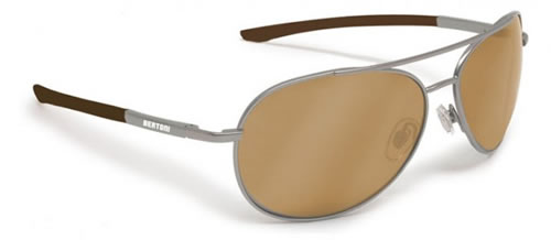Bertoni Polarized P689D Glasses