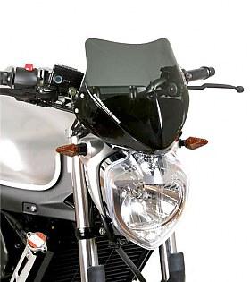 Barracuda Cupolino Yamaha Fz6 S2