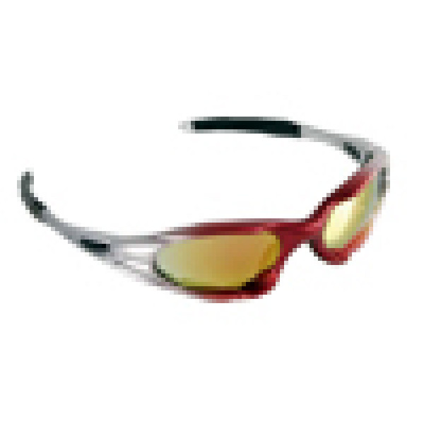 LAMPA Carver Motorcycle Sunglasses